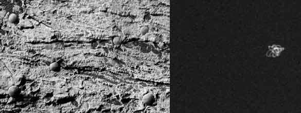 Playas en Marte