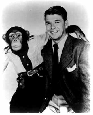 Monos y presidentes