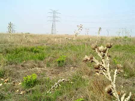 ¿Sequía pasajera o clima roto?